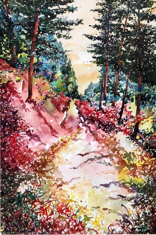 Teton_Trail_(c)_Steve_Bovee