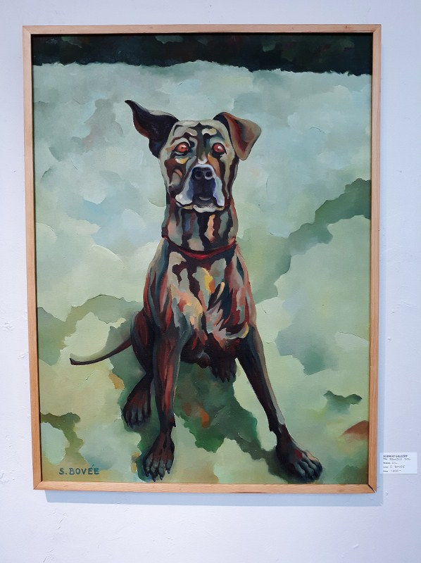 Brindle Dog (c) Steve Bovee