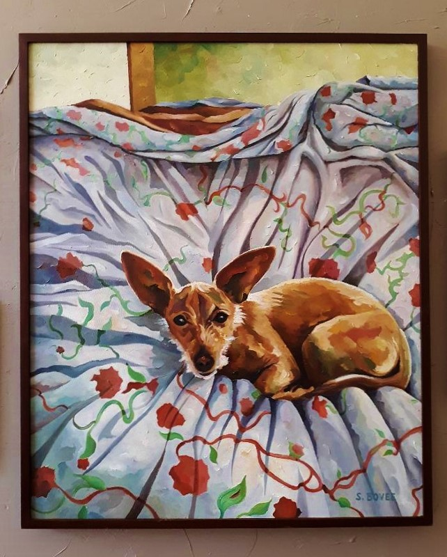 Dog_on_the_Duvet_(c)SteveBovee2020 (642x800)